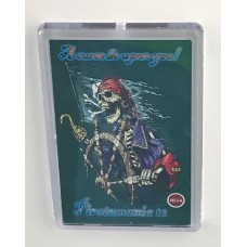Piratemania 12 Fridge Magnet
